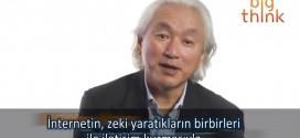 beyin-net