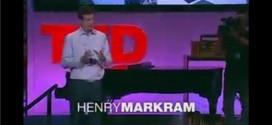 henry-markam-super-beyin-1024x476