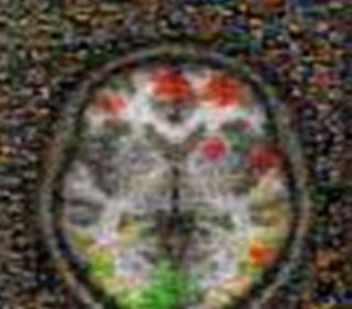 beyin.duygu