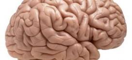 Beyin hücrelerini öldüren 11 neden