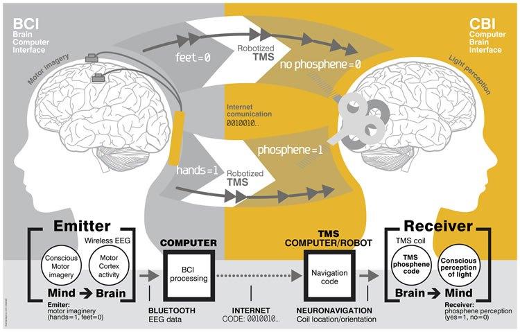 brain-to-brain-communication