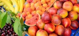 Meyve'nin Desteği