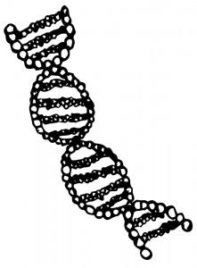 gen_terapi2