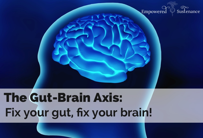 gut-brain-axis