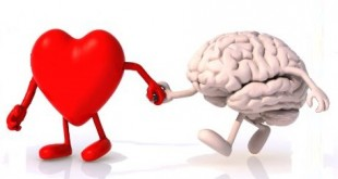 beynin2